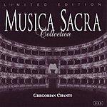 Coro Madrigale Slovenico Musica Sacra Collection: Gregorian Chants