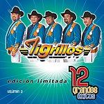 Los Tigrillos 12 Grandes Exitos, Vol.1