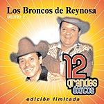 Los Broncos De Reynosa 12 Grandes Exitos, Vol.2