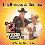 Los Broncos De Reynosa 12 Grandes Exitos, Vol.1