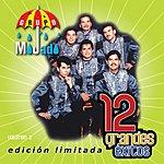 Grupo Mojado 12 Grandes Exitos, Vol.2