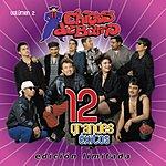Chicos de Barrio 12 Grandes Exitos, Vol.2