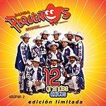 Banda Pequeños Musical 12 Grandes Exitos, Vol.2