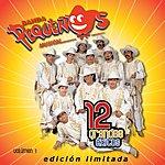 Banda Pequeños Musical 12 Grandes Exitos, Vol.1