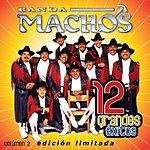 Banda Machos 12 Grandes Exitos, Vol.2