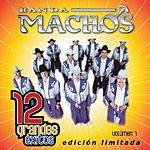 Banda Machos 12 Grandes Exitos, Vol.1