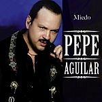Pepe Aguilar Miedo (Live)