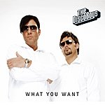 The Disco Boys What You Want (6-Track Maxi-Single)