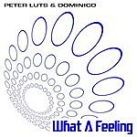 Peter Luts What A Feeling (3-Track Maxi-Single)