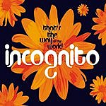 Incognito That's The Way Of The World/Raise