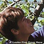 Claudia Schmidt It Looks Fine From Here