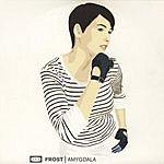 Frost Amygdala: The Remixes (5-Track Maxi-Single)