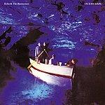 Echo & The Bunnymen Ocean Rain (Remastered)