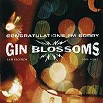 Gin Blossoms Congratulations...I'm Sorry (Bonus Track)