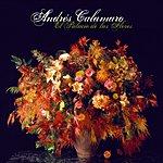 Andrés Calamaro Corazon En Venta (Single)