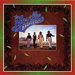 Neville Brothers The Neville Brothers
