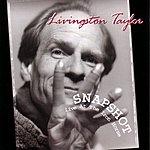Livingston Taylor Snapshot: Live At The Iron Horse