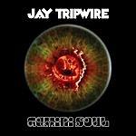 Jay Tripwire Gemini Soul