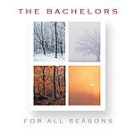 The Bachelors For All Seasons