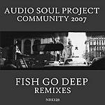 Audio Soul Project Community 2007 (Fish Go Deep Mixes)(3-Track Remix Single)