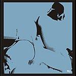 Camel Toe Moon Track (4-Track Maxi-Single)
