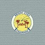 Bright Eyes Cassadaga (Bonus Track)