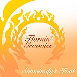 The Flamin' Groovies Somebody's Fool