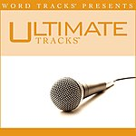 Word Tracks Presents Ultimate Tracks: Undo - As Made Popular By Rush Of Fools (Performance Track)