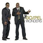 The Gospel Wonders The Gospel Wonders