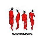 Wire Daisies Wire Daisies