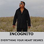 Incognito Everything Your Heart Desires (4-Track Maxi Single)