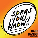 Cover Art: Songs You Know: Hair Bands EP