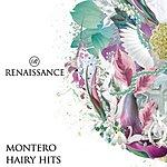 Montero Hairy Hits (4-Track Maxi Single)