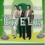 Bud E Luv Diary Of A Loungeman