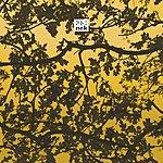 Audio Soul Project Community 2007 (2-Track Single)