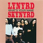 Lynyrd Skynyrd What's Your Name