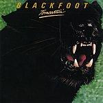 Blackfoot Tomcattin'