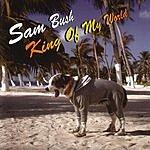 Sam Bush King Of My World