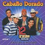 Caballo Dorado 12 Grandes Exitos, Vol.1