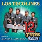 Los Tecolines 12 Grandes Exitos, Vol.2
