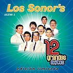 Los Sonor's 12 Grandes Exitos, Vol.2