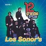 Los Sonor's 12 Grandes Exitos, Vol.1