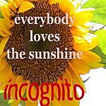 Incognito Everybody Loves The Sunshine (Single)