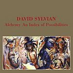 David Sylvian Alchemy: An Index Of Possibilities (Remastered)