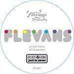 Flevans Cold Hands (4-Track Maxi-Single)