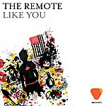 Remote Like You (9-Track Remix Maxi Single)