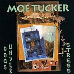 Moe Tucker Dogs Under Stress