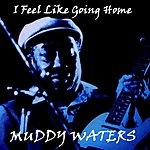 Muddy Waters I Feel Like Going Home