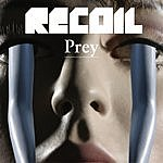 Recoil Prey (4-Track Single)