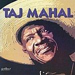 Taj Mahal Songs For The Young At Heart: Taj Mahal